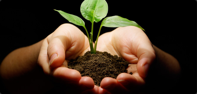 Socially Responsible Sourcing: Not So Simple