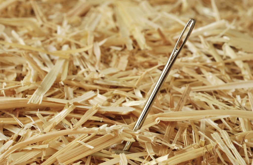 Executive Search: Finding the Needle in the Haystack: An interview with Jim Searing, HBS '79; Founder, Lochlin Partners