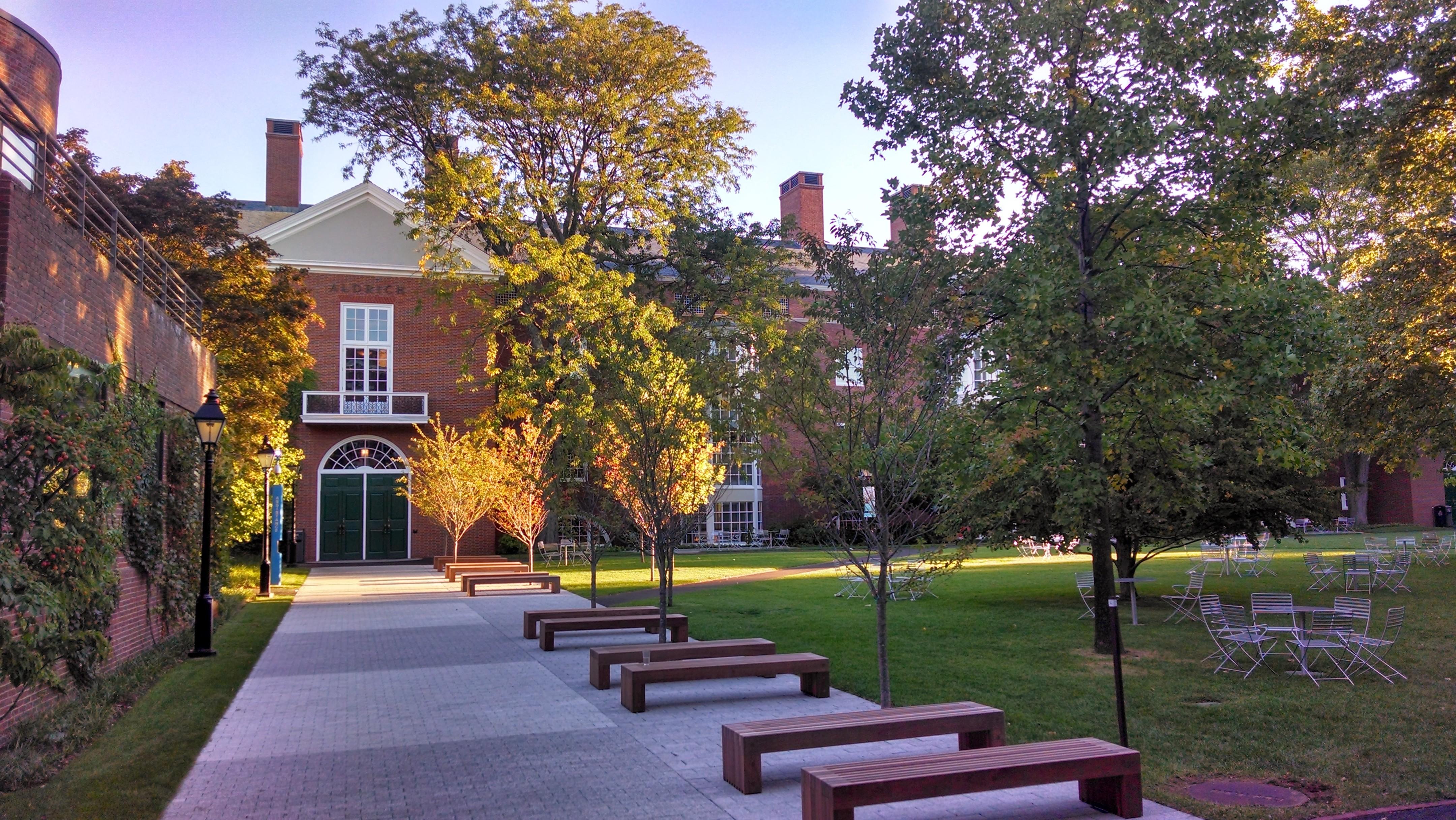 Harvard accepted essays
