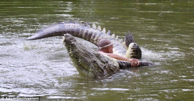 Why on Earth Would You Wrestle Crocodiles?
